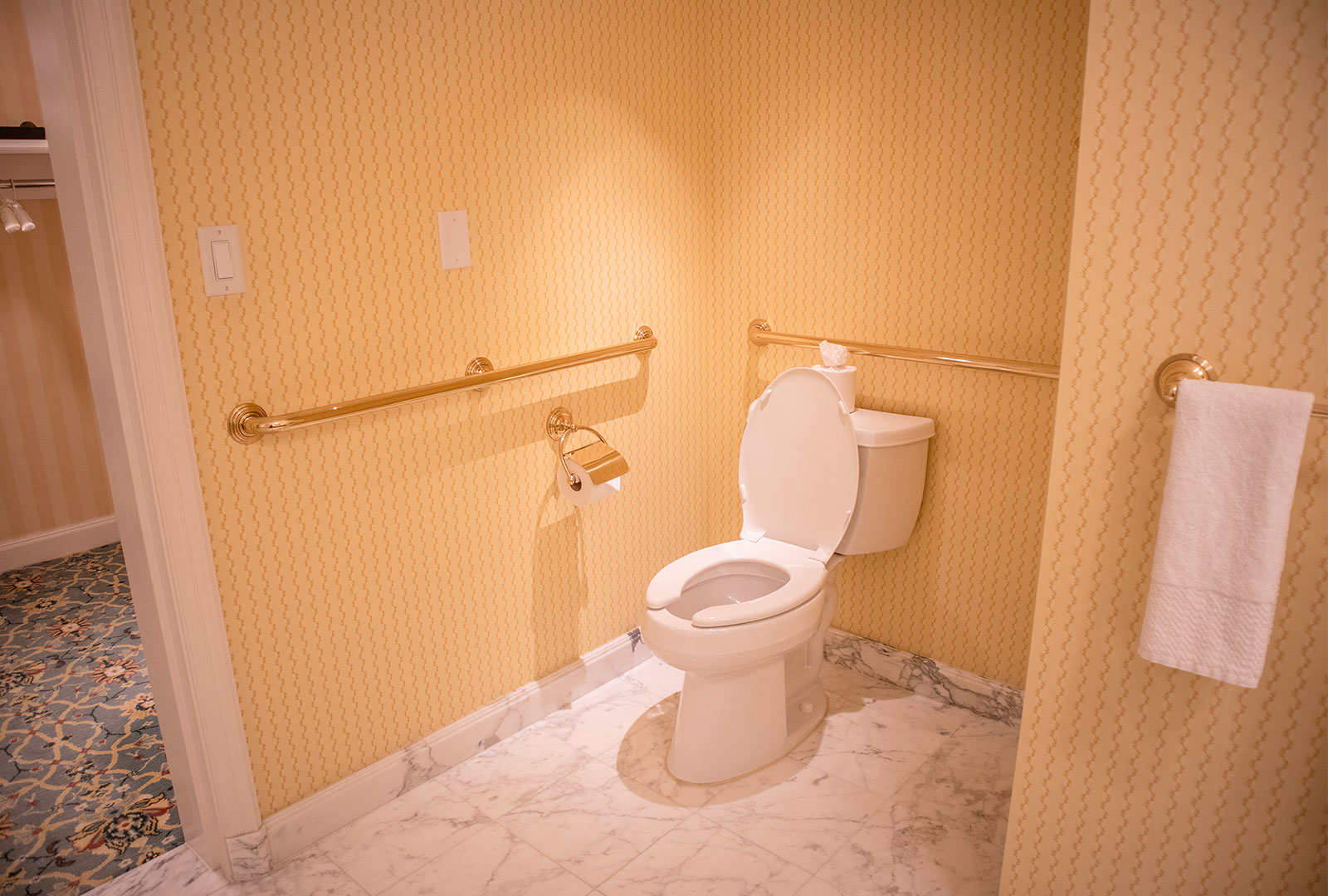 Bathroom Toilet With ADA Rails